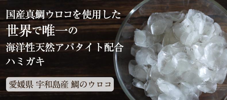 国産真鯛ウロコを使用した世界で唯一の海洋性天然アパタイト配合ハミガキ 愛媛県 宇和島産 鯛のウロコ