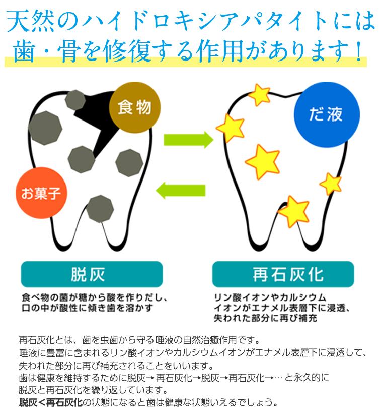 天然のハイドロキシアパタイトには 歯・骨を修復する作用があります!