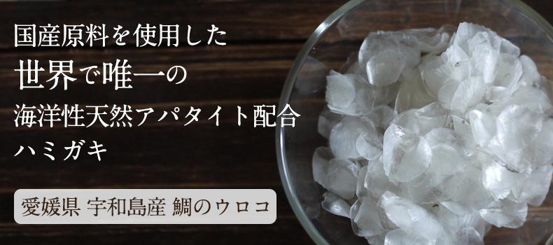 国産原料を使用した世界で唯一の海洋性天然アパタイト配合ハミガキ 愛媛県宇和島産鯛のウロコ