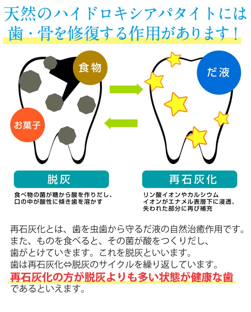 天然のハイドロキシアパタイトには歯・骨を修復する作用があります
